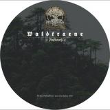 Waldtraene - Aufbruch CD (Metallbox)