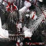 Zorn - Todesschwadron CD
